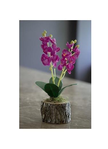Çiçekmisin Doğal Kütükte Orkide Yapay Çiçek Fuşya